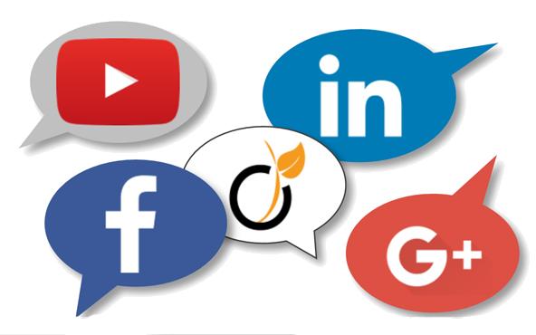 MerAlliance sur les réseaux sociaux